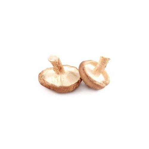 Fresh Mushroom - Shiitake