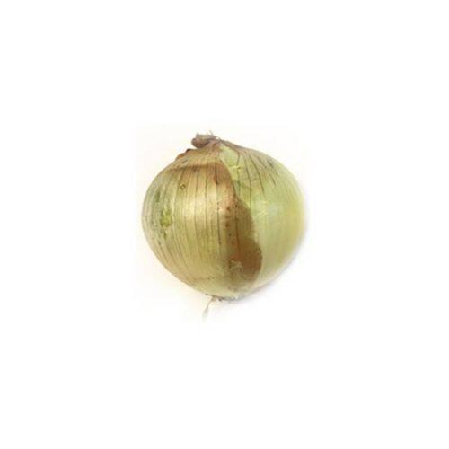 Onion, White Local
