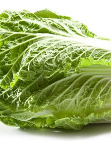 Organic Cabbage, Chinese