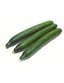 Organic Cucumber, Japanese