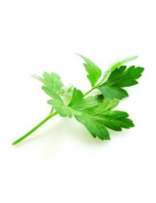 Organic Parsley, Flat Leaf