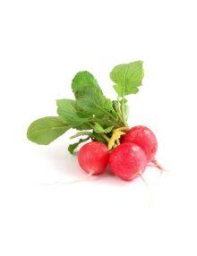 Organic Radish, Cherry / Red