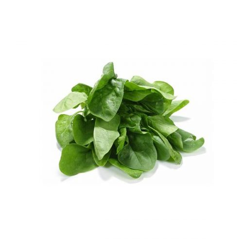 Organic Spinach, New Zealand
