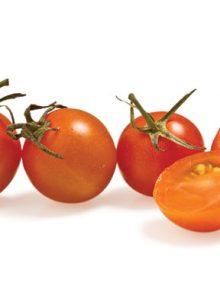 Tomato, Cherry