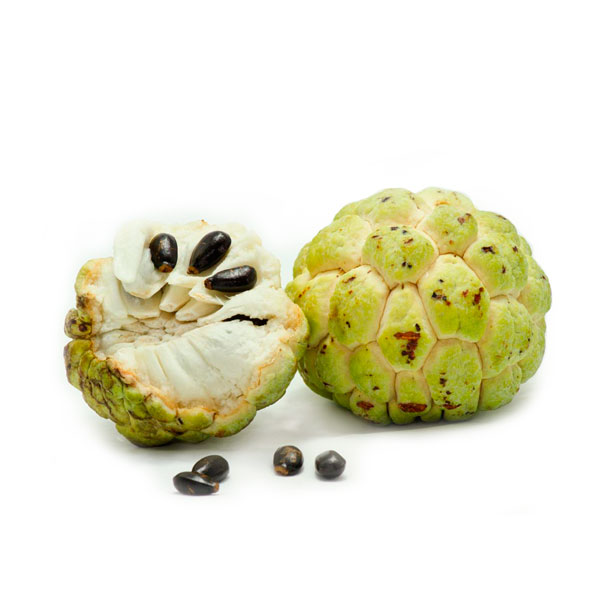 Sugar Apple / Sweetsop / Atis